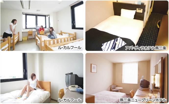 shirone_room