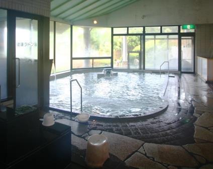 天竜 御大の館の浴室