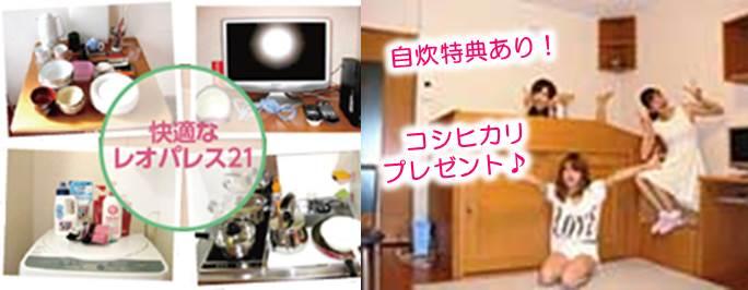 nishishibata_jisui2