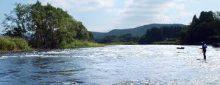 第二北部 釣り スポット 米代川