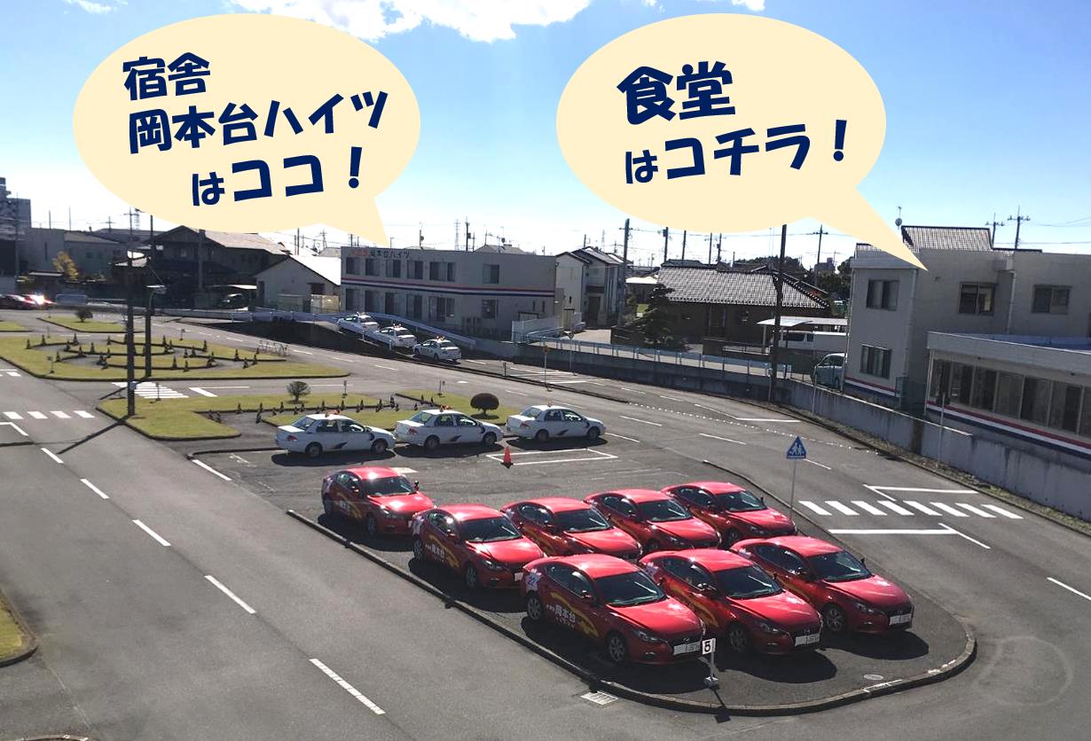 学校 栃木 県 自動車