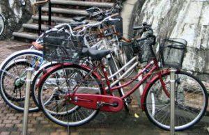 自転車 無料 合宿