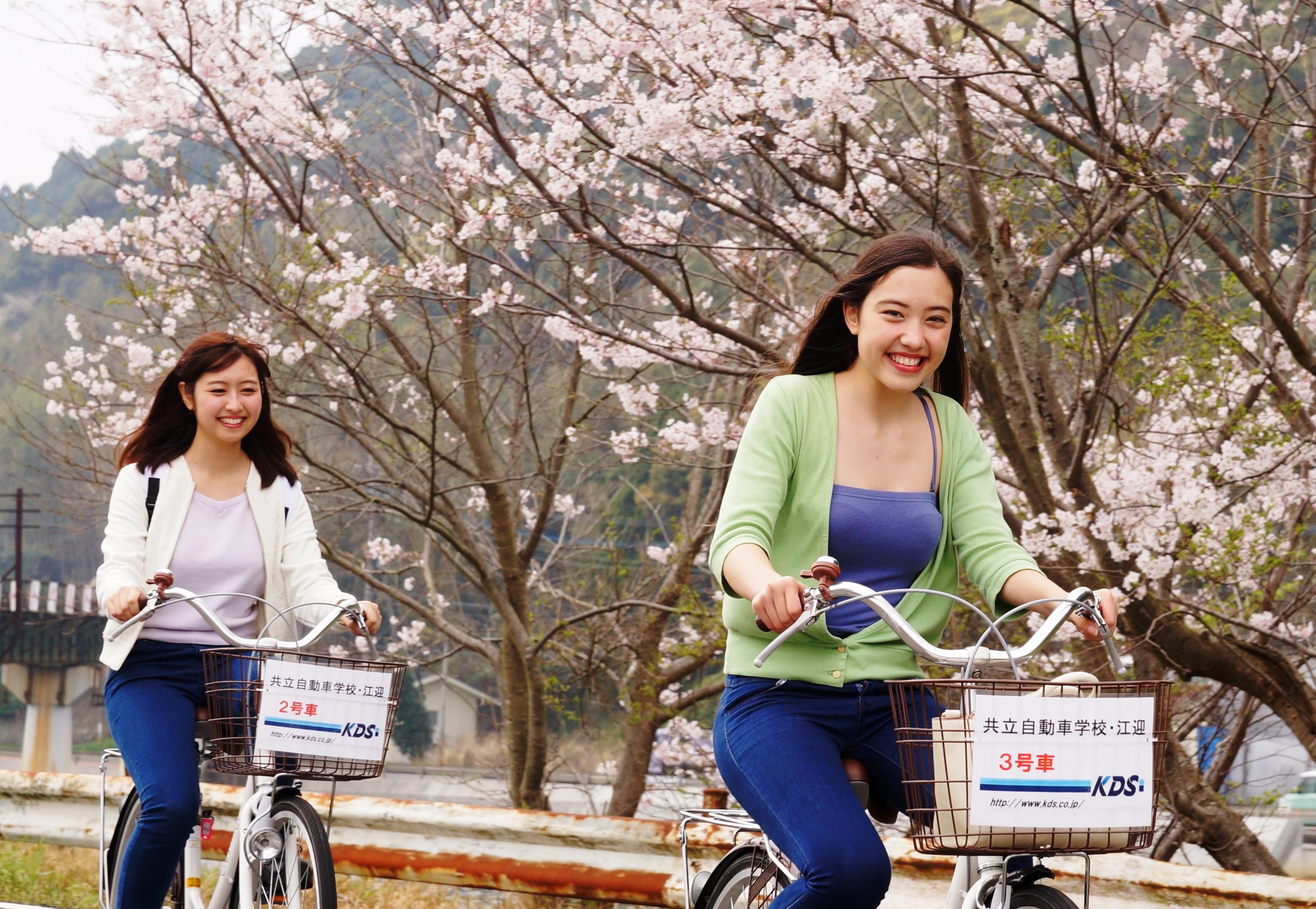 レンタサイクル 無料 自転車